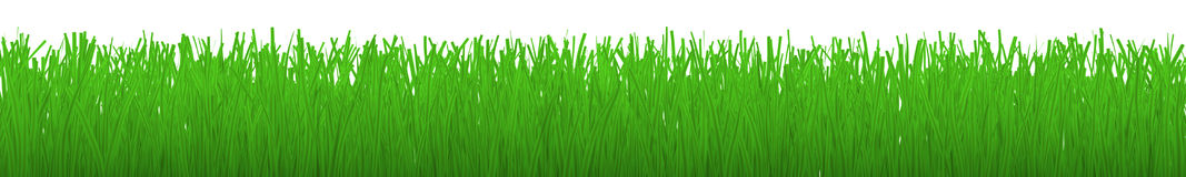 Horizontal strip of grass - Royalty Free Stock Photography