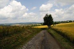 Horizontal tchèque Images libres de droits