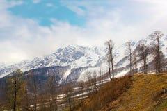 Horizontal étonnant de montagne Photographie stock libre de droits
