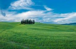 Horizontal toscan type Image libre de droits
