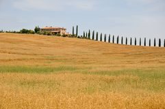 horizontal Toscane Photo libre de droits