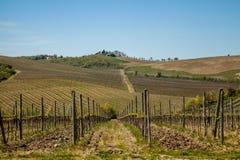 Horizontal, Toscane Val d'Orcia Photographie stock