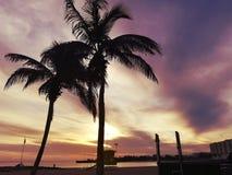 Horizontal tropical images stock