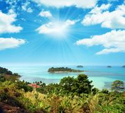 horizontal tropical Images stock