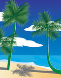 Horizontal tropical avec des paumes Photos stock