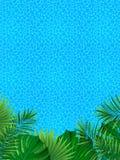 Horizontal tropical Cadre vertical de frontière Illustration de vecteur beau fond tropical bon choix pour l'été illustration stock