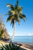 Horizontal tropical de plage Photographie stock libre de droits
