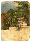 Horizontal tropical. Vieille carte postale. Photo stock