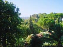 Horizontal type de la Provence Photographie stock libre de droits