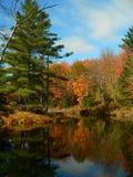 Horizontal V d'automne Photos libres de droits