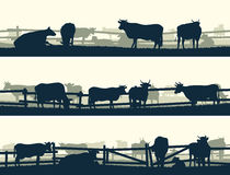 Horizontal vector banner farm fields with fence and farm animals Stock Photos