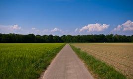 Horizontal vert-bleu d'agriculture Images stock