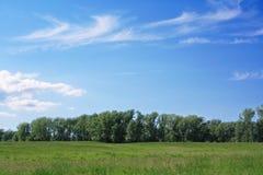 Horizontal vert d'été Photographie stock