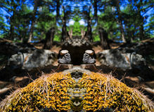 Horizontal vibrant vivid stones spiritual balance Royalty Free Stock Photos