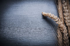Horizontal view ears of wheat on wooden board Stock Photography