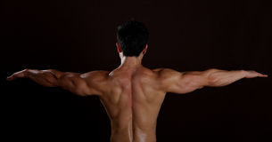 Horizontal View of a muscle man back Royalty Free Stock Photography