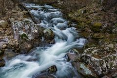 A Horizontal View of a Popular Wild Mountains Trout Stream royalty free stock photo