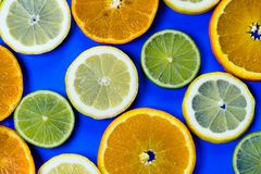 Selection of slices of citrus fruit on a bright high contrast dark blue background. Horizontal view of slices of citrus fruit on a bright high contrast dark blue royalty free stock photography