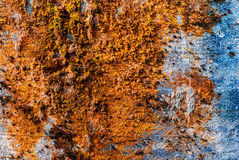 Horizontal vintage orange moss rusty concrete wall texture backd Royalty Free Stock Photos