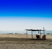 Horizontal vivid man meeting bright morning at sandy beach lands Stock Images