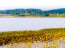 Horizontal vivid Norway backwater landscape Royalty Free Stock Photography