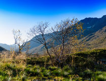 Horizontal vivid Norway nature landscape Stock Photography