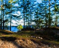 Horizontal vivid toy nature landscape zen stones Royalty Free Stock Image