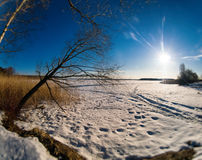 Horizontal vivid winter landscape with sun rays and footprints Stock Images