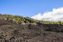 Horizontal volcanique Photo libre de droits