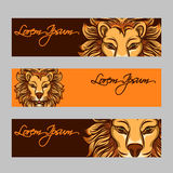 Horizontal web banners with lion face Royalty Free Stock Image