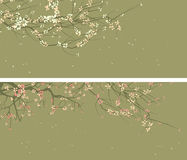 Horizontal wide banners of abstract drawing of blossoming tree Stock Photos