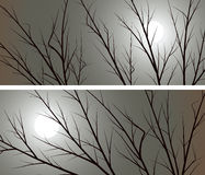 Horizontal wide banners branches of trees against the moon. Set of horizontal abstract wide banners branches of trees against the moon Royalty Free Stock Images