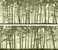 Horizontal wide banners of coniferous wood. Stock Images