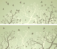 Horizontal wide banners of tree branches and flock of birds. Stock Image