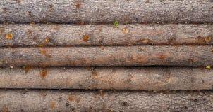 Horizontal Wood log background textured pattern plank wall Royalty Free Stock Photo
