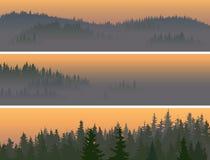 Horizontale banners van nevelig naaldhout. Royalty-vrije Stock Afbeeldingen