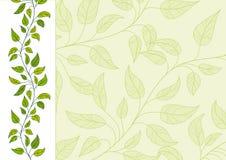 Horizontale bloemenachtergrond Stock Afbeelding