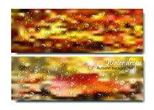 Horizontale Fahnen stellten mit Wasser-Tropfen auf dem Herbsthintergrund ein Vector schönes Konzept des regnerischen Fensters des Stockbild