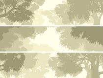 Horizontale Fahnenkrone von Bäumen gegen den Himmel Stockbilder