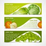 Horizontale groentenbanners Royalty-vrije Stock Afbeeldingen