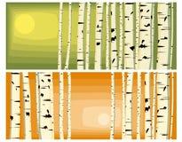 Horizontale illustraties van boomstammenberken. Stock Fotografie