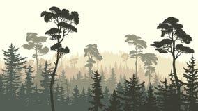 Horizontale Illustration des grünen braunen Koniferenwaldes Lizenzfreie Stockfotos