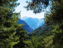 Horizontale levendige dramatische het landschapsbomen van de bergenmening Royalty-vrije Stock Foto's