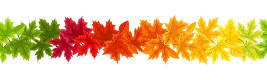 Horizontale naadloze achtergrond met bladeren van de de herfst de kleurrijke esdoorn Vector illustratie Stock Fotografie