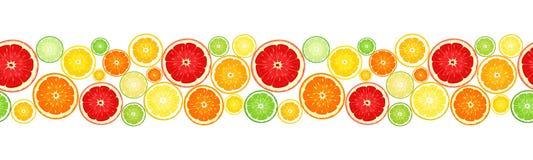Horizontale naadloze achtergrond met citrusvruchten Vector illustratie Stock Afbeelding