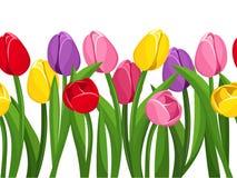 Horizontale naadloze achtergrond met gekleurde tulpen. vector illustratie