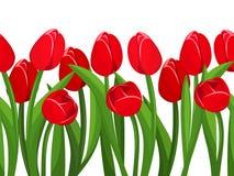 Horizontale naadloze achtergrond met rode tulpen Vector illustratie Stock Afbeeldingen