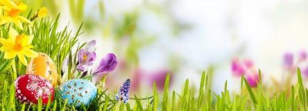 Horizontale Pasen-banner met eieren in een weide royalty-vrije stock fotografie