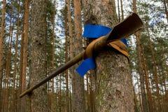 Horizontale Stange für Straßentraining in einem Holz Lizenzfreies Stockbild