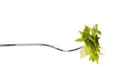 Horizontale vork met salade Royalty-vrije Stock Foto